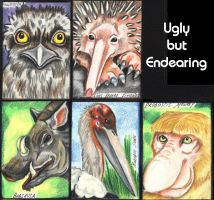 Ugly is the new Beautiful by lemurkat