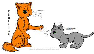 Firestar and Ashpaw by littleshadow3