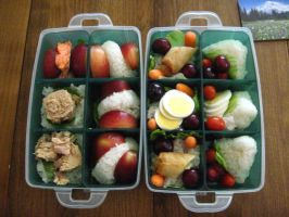 Bento Box lunches 2 by FullMoonArtists