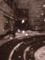 The_snow by Theressa