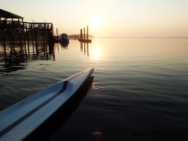 Stand and Paddle SUP 6234 by PaddleGallery