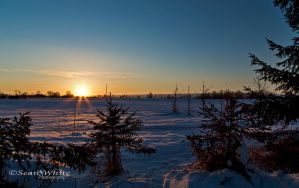 Sunset on Snow Fields by 1shotaway