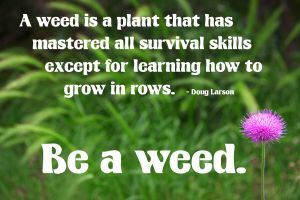 Be A Weed by ElizabethBlair