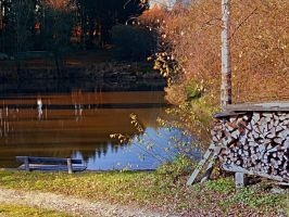 Romantic bench at the pond II by patrickjobst