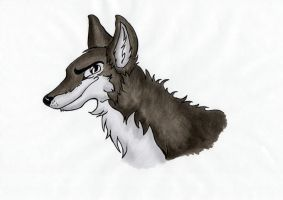 Copic Wolf by dgcdvaras