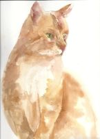 Brown Watercolor Cat by Little-Blue-Buggy