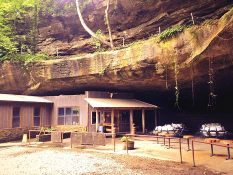 The Rattlesnake Saloon by Love2B