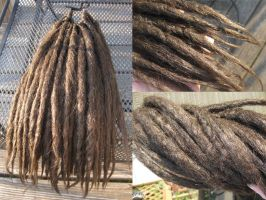 Another set of Dreads by Archer-1