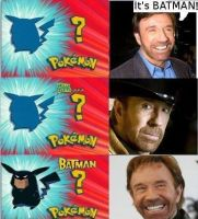 CHUCK NORRIS the most power full human by ShabaVision