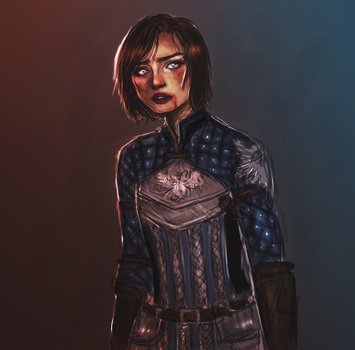 Grey Warden by starparticles