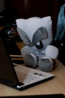 Fella plushie surfing the web by fredrikeriksson