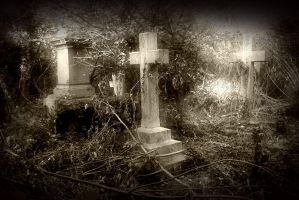 Old Barnes Cemetery V by only-melancholy