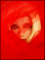 Red Veil ll by littlemewhatever