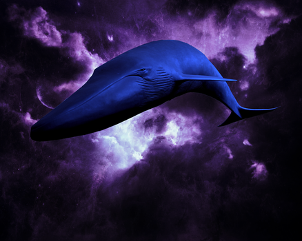 The Flying Whales of Takansivlata by Jakeukalane
