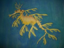 leafy sea dragon close up by the-jabber-wocky