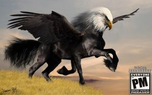 Horse Eagle photomanipulation surreal animals by junnioor