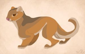 Daily Design: Jaguarundi by sketchinthoughts