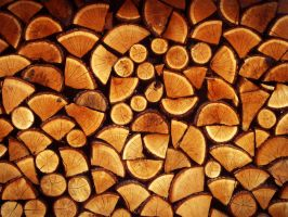 woodwall by Link05