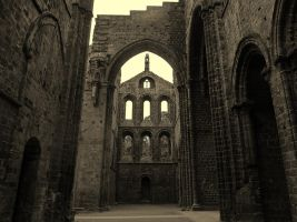 kirkstall abbey by cannibalmoth