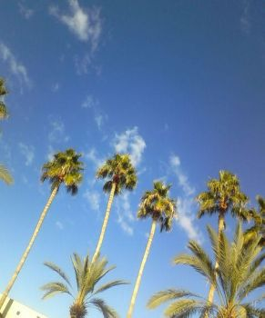 Clear Skies by whimsicalworkings