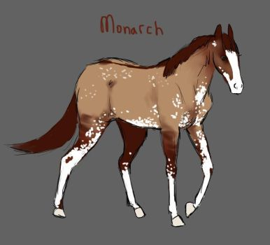 Monarch quick sketch by Starquilled