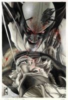 Wolverine: Evolution 2 cover issue 313 by simonebianchi