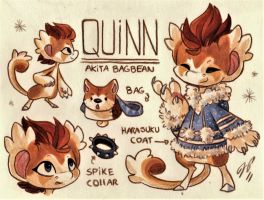 Quinn Ref. Sheet [Commission] by Baraayas