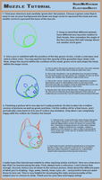 Muzzle Tutorial by ElectricDeity