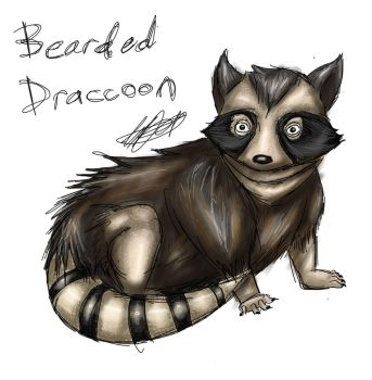 Day 5: Bearded Draccoon by LunacyInArt