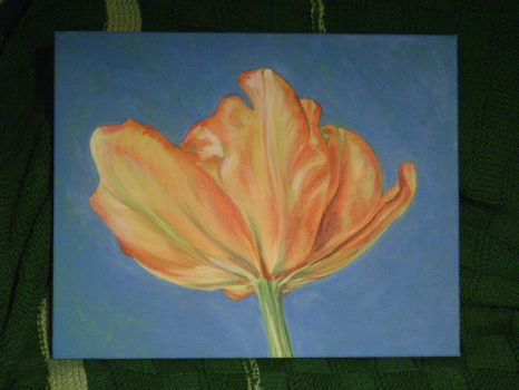 Parrot Tulip by suprhppymgcprincesss