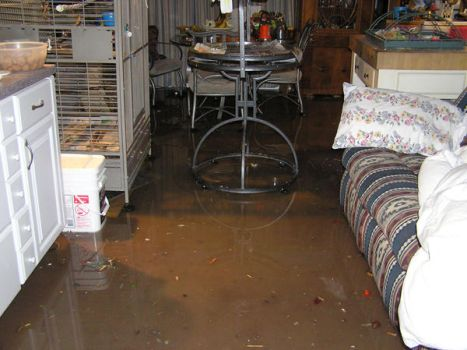 Flood Photo 2 by Blackmoonlily