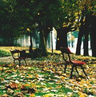 autunno by s0n-et-lumiere