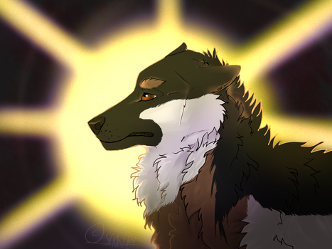 GIFT: Don't you dare to forget the Sun by snowburntt