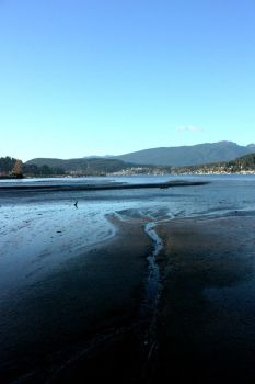 A Day at Rocky Point 5: Low Tide by JordanoDaMano