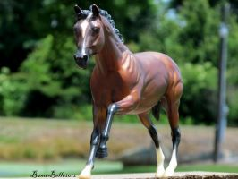 The Famous Cigar by BamaBelle2012