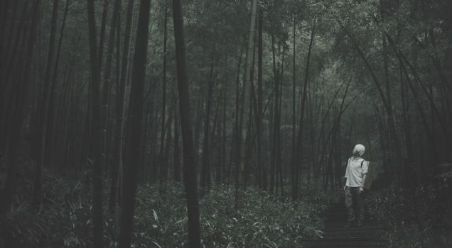 mushishi another bamboo forest by 35ryo