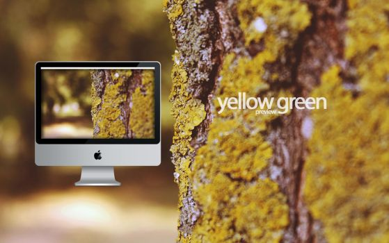 yellow green by SteveJakab