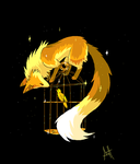 Cage by Ash-Dragon-wolf