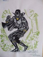 Black Panther - LCF 2008 by SpiderGuile