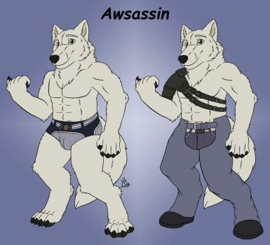 My first ref sheet by Awsassin
