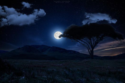 Under the moon by Nikos23a