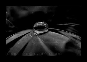LONELY DROP . .. by light-from-Emirates