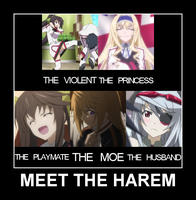 MEET THE HAREM by chaotrix
