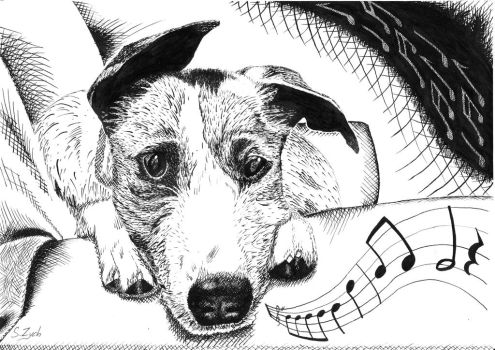 Musical Doggy [Ink Drawing] by SebCroc
