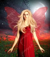 Midnight Fairy by Jassy2012