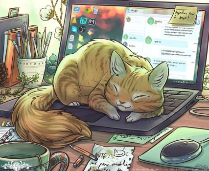 Chat sur PC by o0dzaka0o