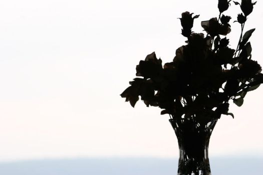 Silhouette Vase by SerSeanConnerie