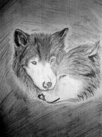 love wolves by MEDC