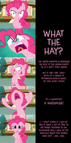 Pinkie Pie Says Goodnight: Mad Rush by MLP-Silver-Quill