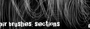 Hair Brushes: Sections by maskimxul
